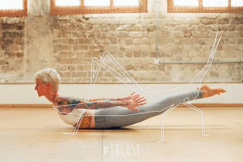 Yoga-Hayvan-4